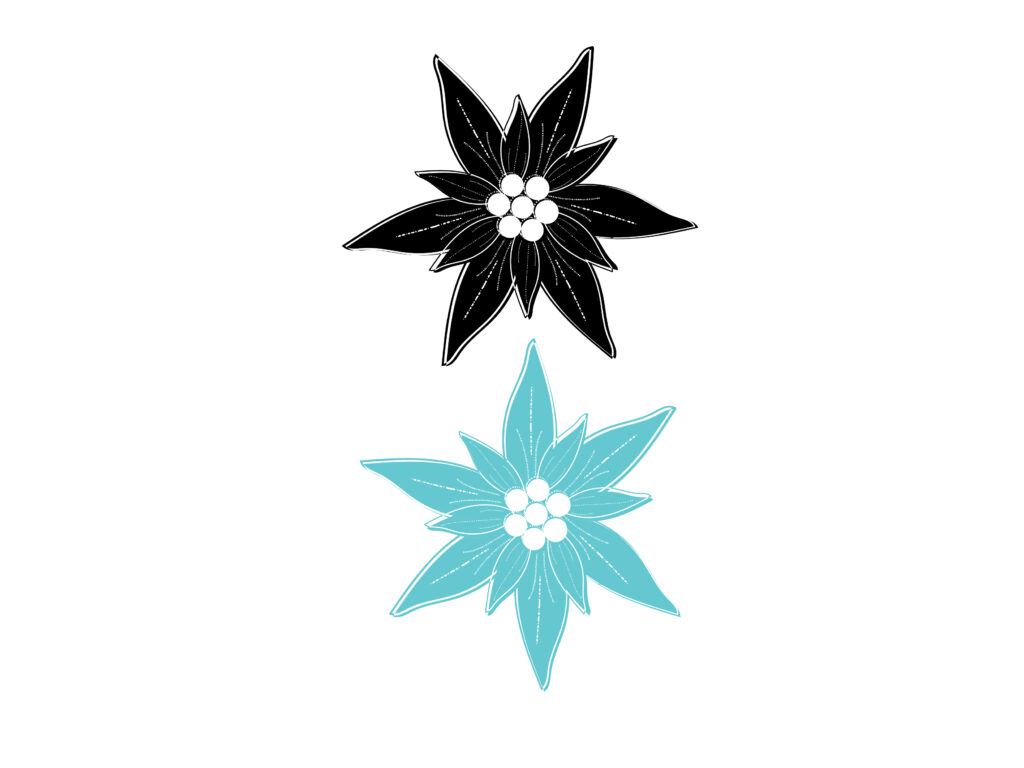 Monochrome Iterations of the Edelweiss graphic illustration